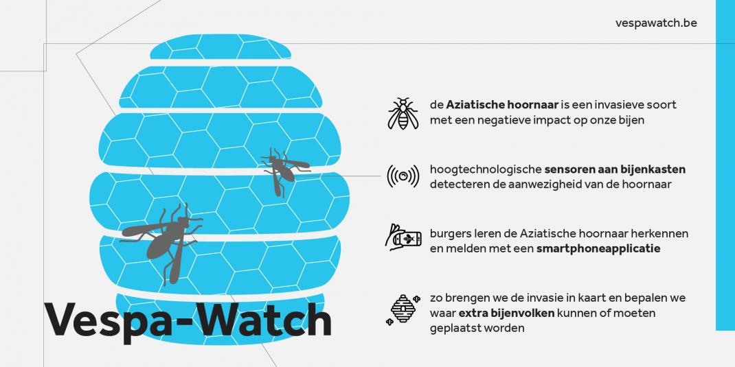 Vespa-watch infographic